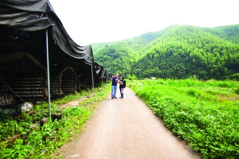 Die Farmen sind umgeben von wilder Natur