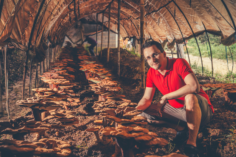 Beniamin Hawlik mit Reishi Pilzen im Chinesischen Hochland